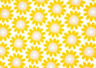 Bloom in Sunflower